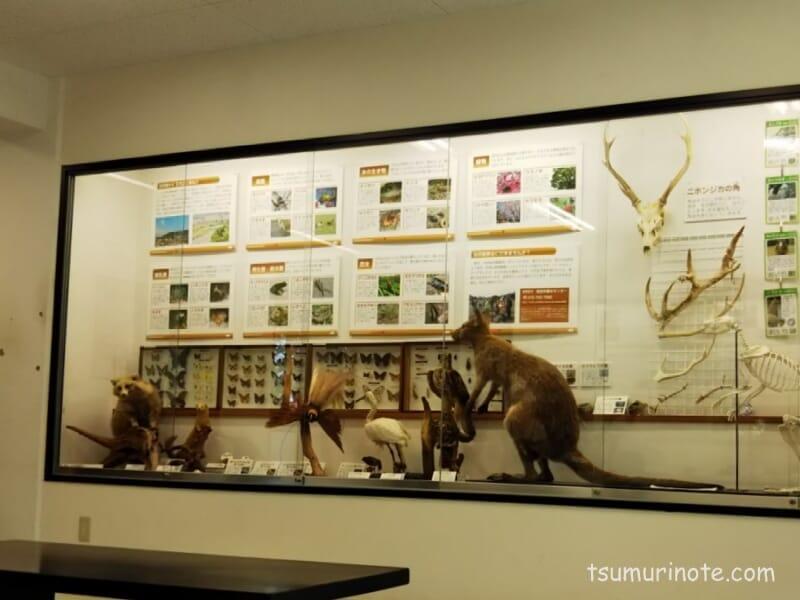 五月山動物園アップルランドギャラリー
