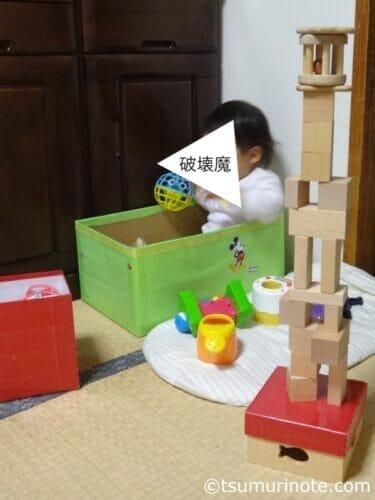 ベビーが初めて出会う木のおもちゃ、なかよしライブラリー〈あかちゃんセット〉レビュー04
